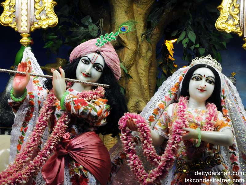 Sri Sri Radha Gopinath Close up Wallpaper (005)