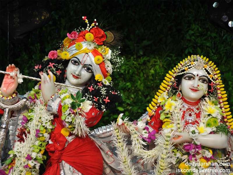 Sri Sri Radha Gopinath Close up Wallpaper (013)
