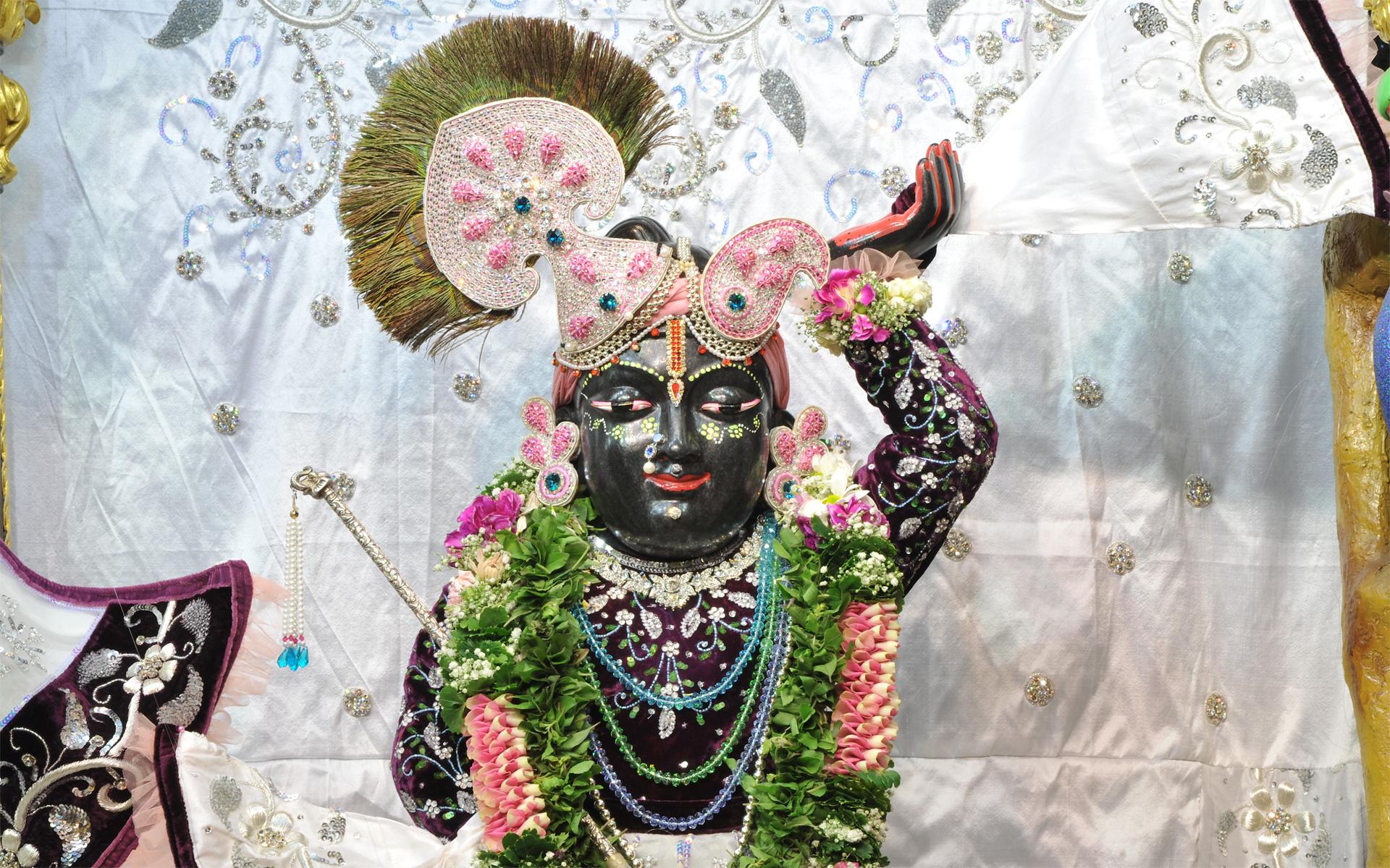 Sri Gopal Close up Wallpaper (018) Size 1920x1200 Download