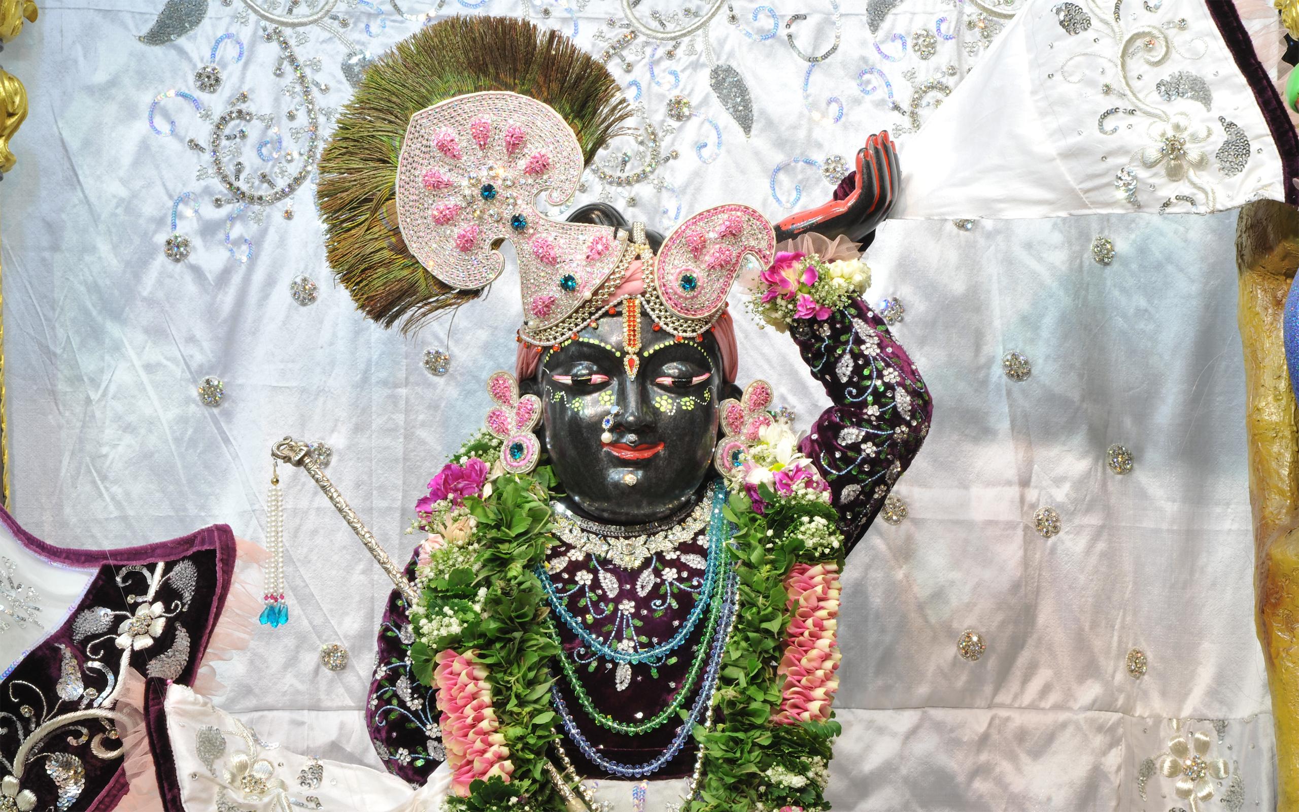 Sri Gopal Close up Wallpaper (018) Size 2560x1600 Download