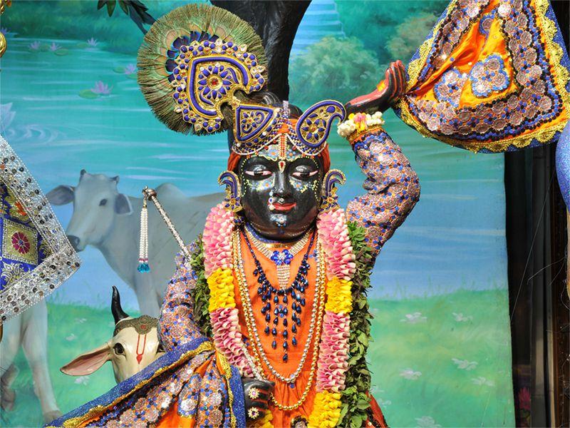 Sri Gopal Close up Wallpaper (020)