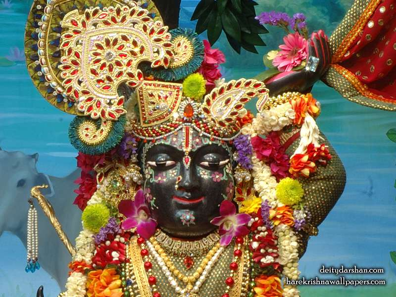 Sri Gopal Close up Wallpaper, Hare Krishna Wallpapers