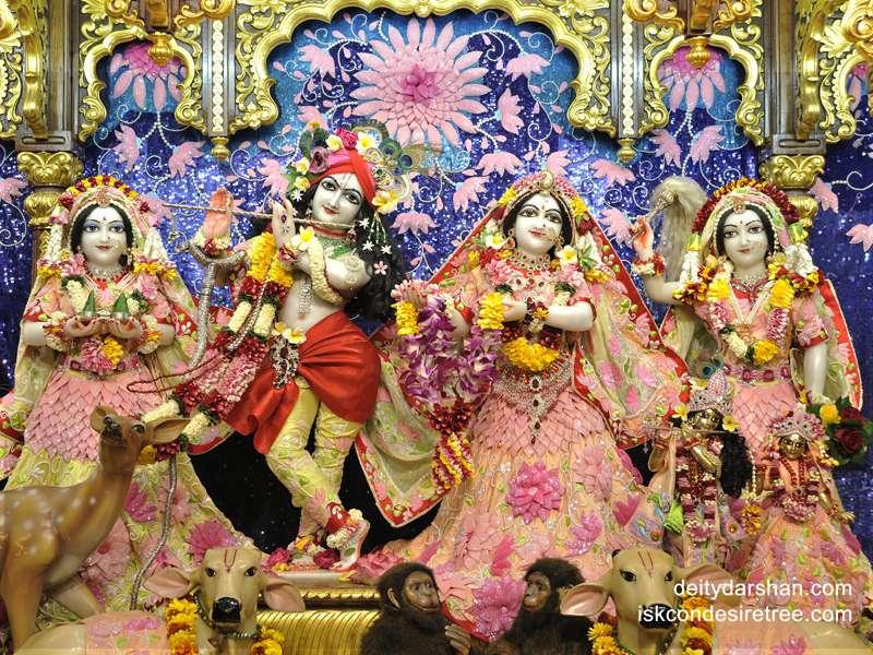 Sri Sri Radha Gopinath Lalita Vishakha Wallpaper (031)