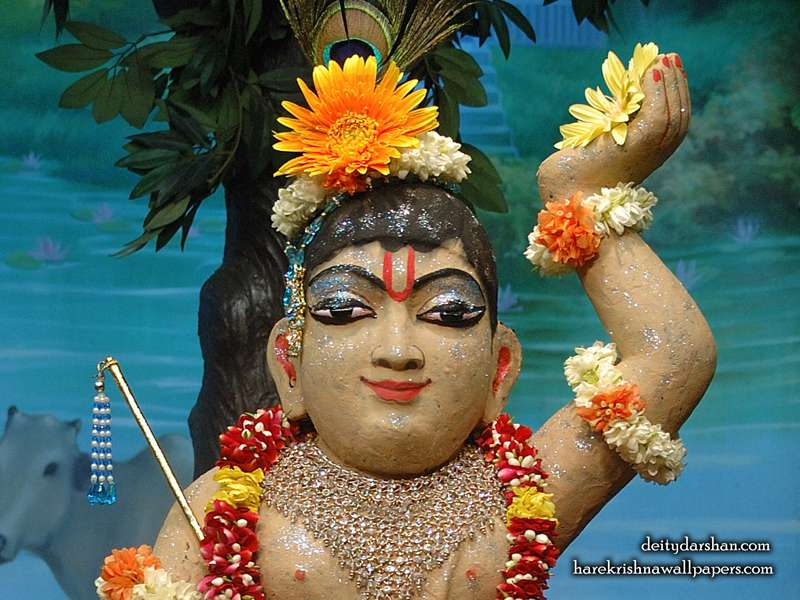 Sri Gopal Close up Wallpaper, Hare Krishna Wallpapers, Sri Gopal Ji Wallpapers.