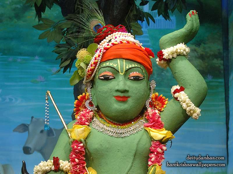 Sri Gopal Close up Wallpaper, Hare Krishna Wallpapers, Srinath Ji Wallpapers