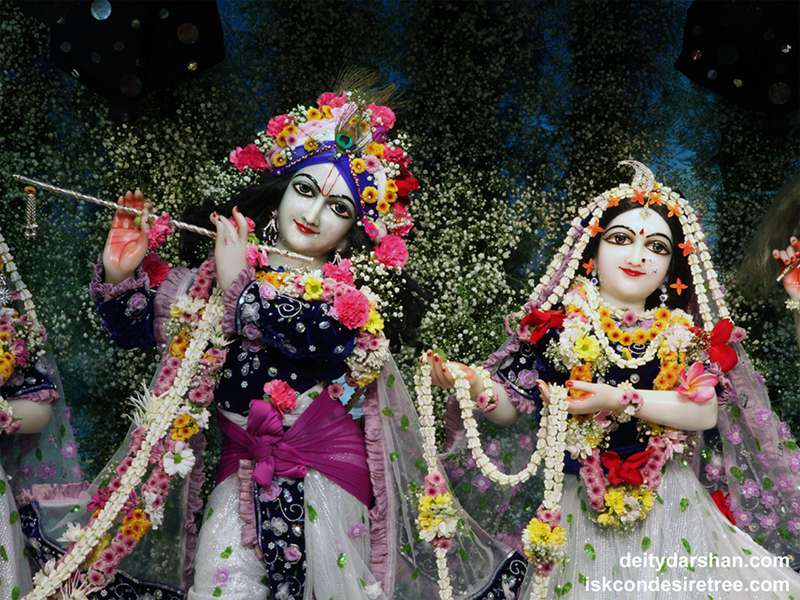 Sri Sri Radha Gopinath Close up Wallpaper (037)