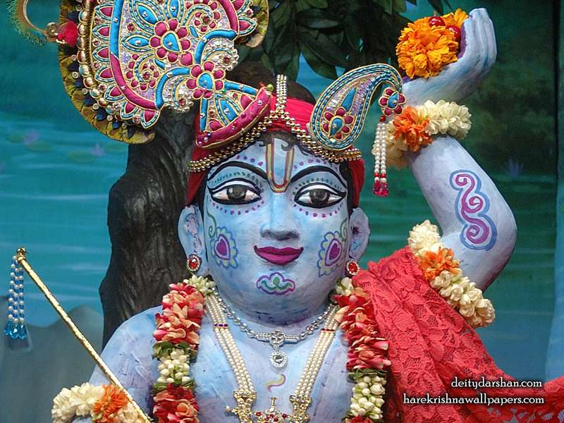 Sri Gopal Close up Wallpaper, Hare Krishna Wallpapers, Srinathji Wallpapers