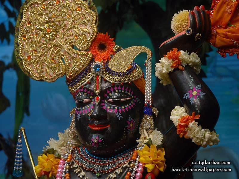 Sri Gopal Close up Wallpaper, Hare Krishna Quotes, Free Wallpapers.