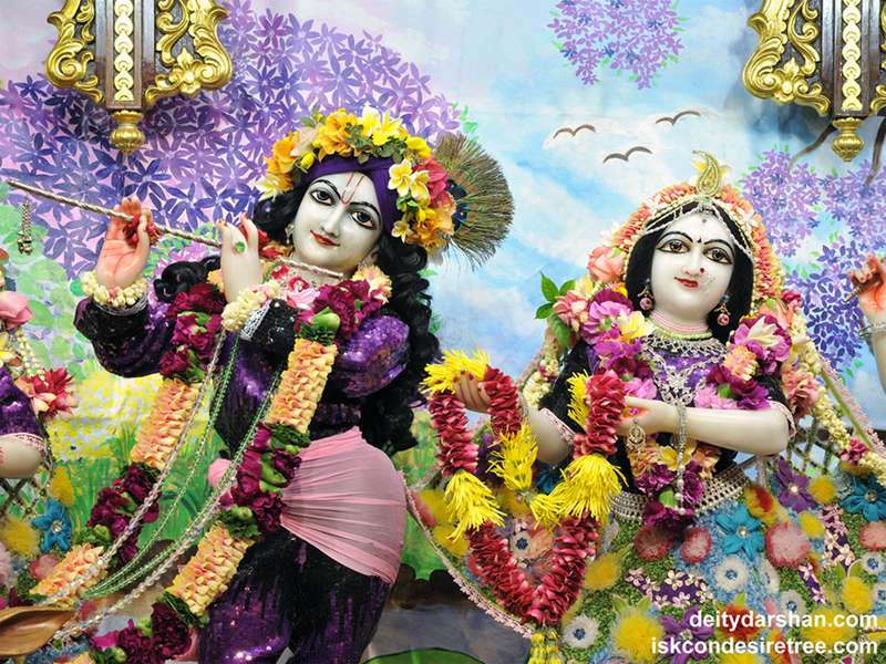 Sri Sri Radha Gopinath Close up Wallpaper (049)