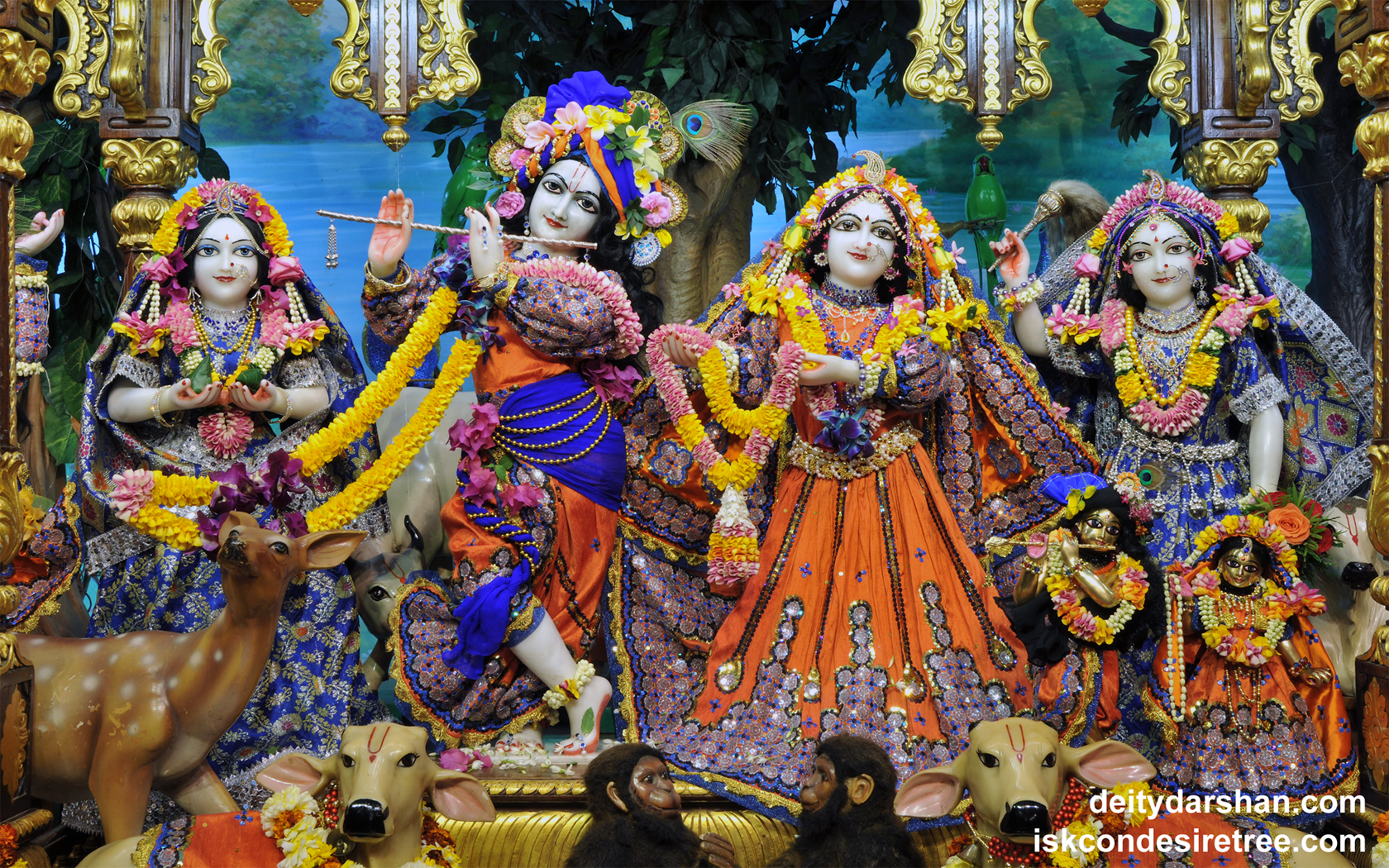 Sri Sri Radha Gopinath Lalita Vishakha Wallpaper (051) Size 1680x1050 Download