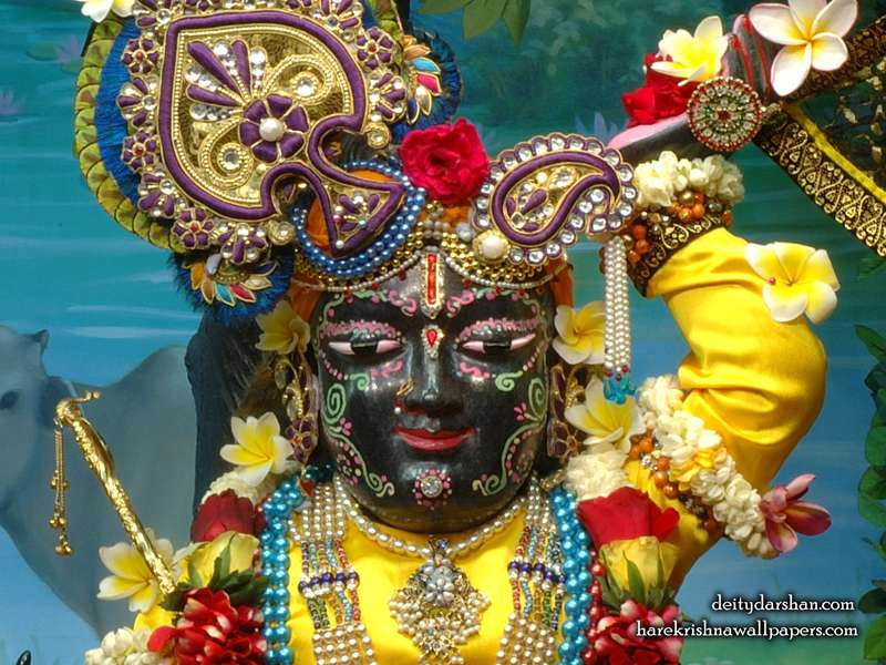 Sri Gopal Close up Wallpaper, Hare Krishna Wallpaper