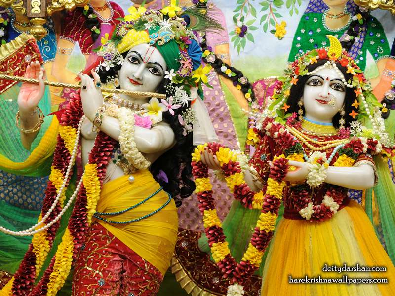 Sri Sri Radha Gopinath Close up Wallpaper (055)