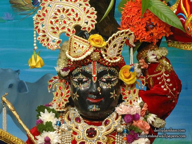 Sri Gopal Close up Wallpaper, Hare Krishna Wallpapers