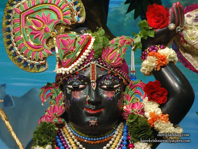 Sri Gopal Close up Wallpaper, Hare Krishna Wallpapers.