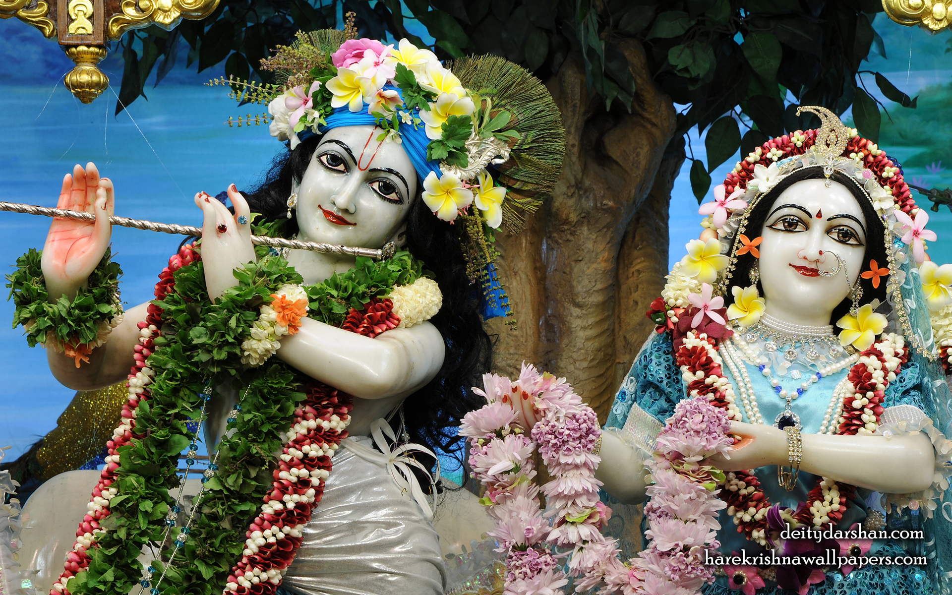 Sri Sri Radha Gopinath Close up Wallpaper (070) Size 1920x1200 Download