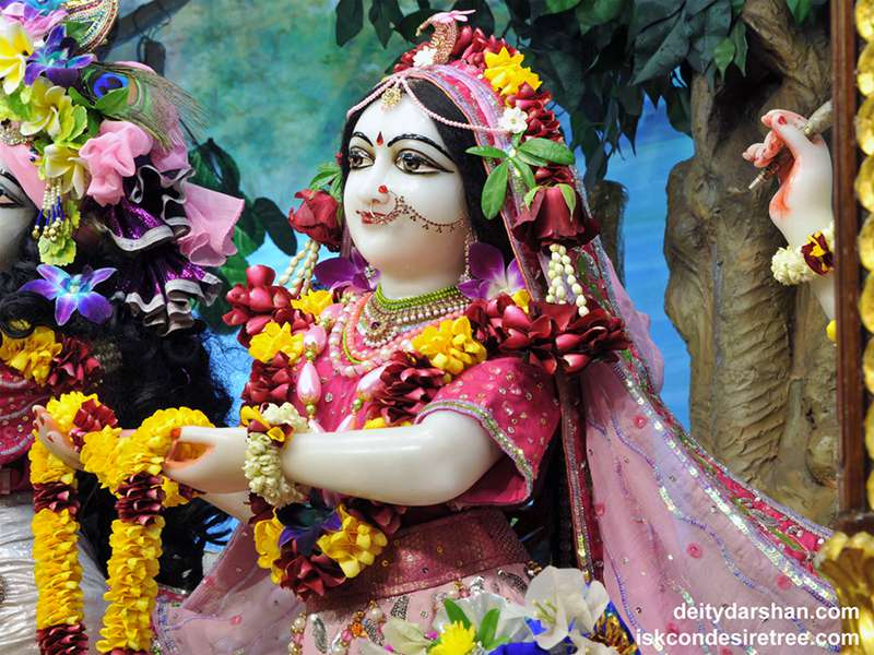 Srimati Radharani Close up Wallpaper (085)