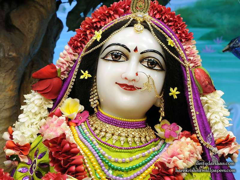 Srimati Radharani Close up Wallpaper (103)