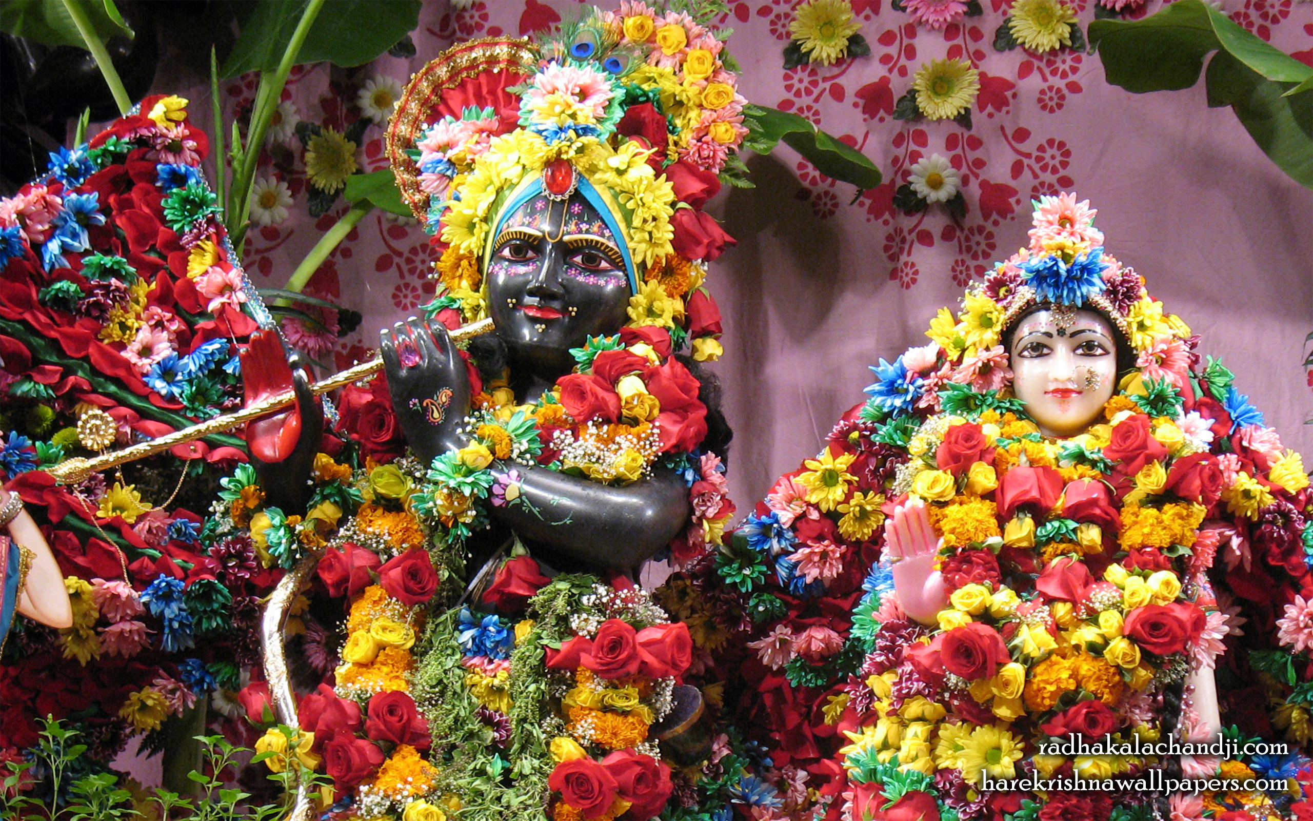 Sri Sri Radha Kalachanda Close up Wallpaper (001) Size 2560x1600 Download