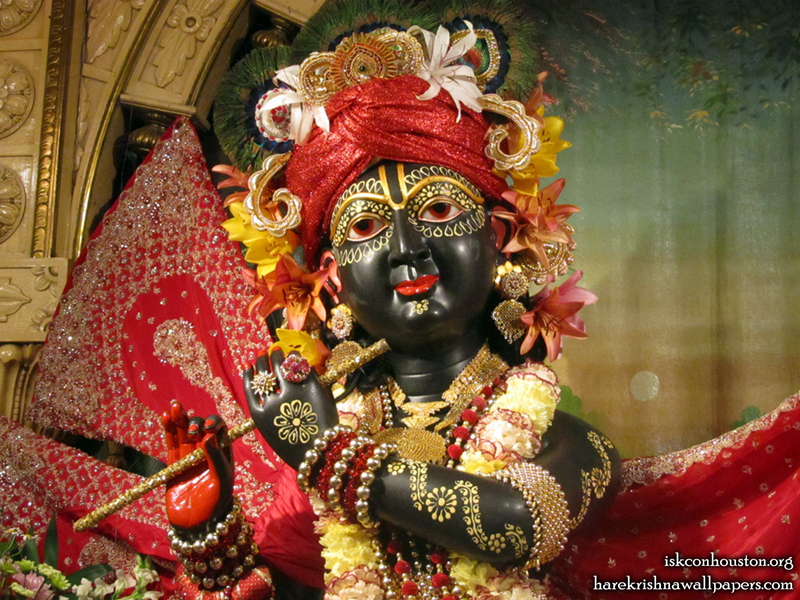 Sri Nilamadhava Close up Wallpaper (007)