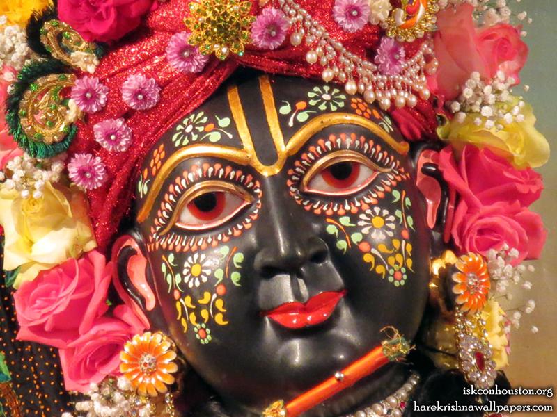 Sri Nilamadhava Close up Wallpaper (010)