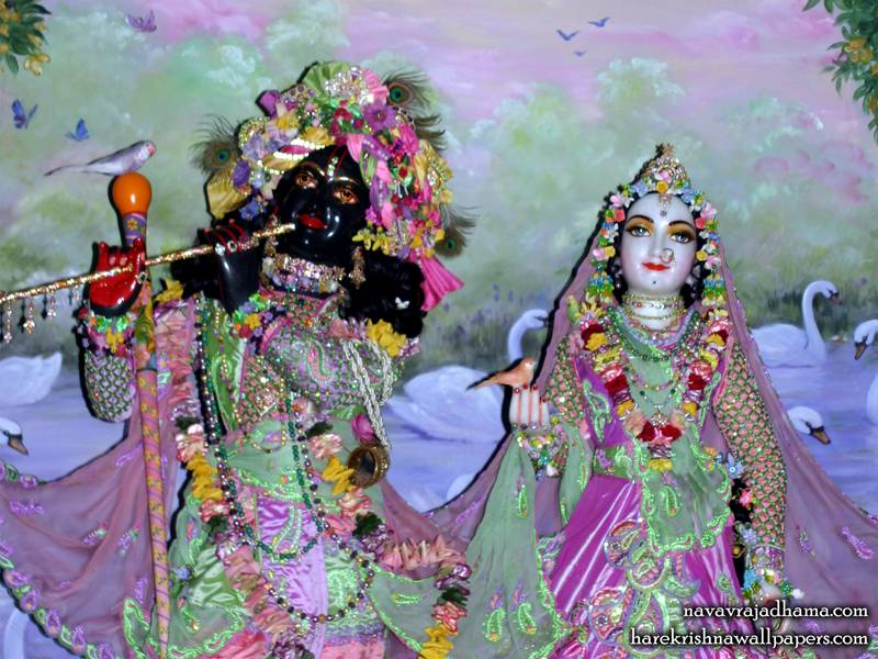 Sri Sri Radha Shyamsundar Close up Wallpaper (011)