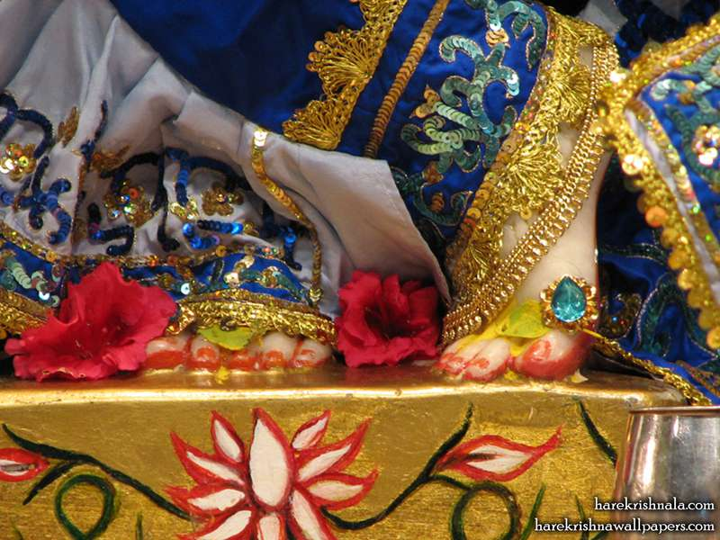 Sri Dwarkadhish Feet Wallpaper (002)