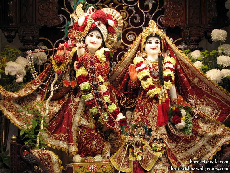 Sri Sri Rukmini Dwarkadhish Wallpaper (002)