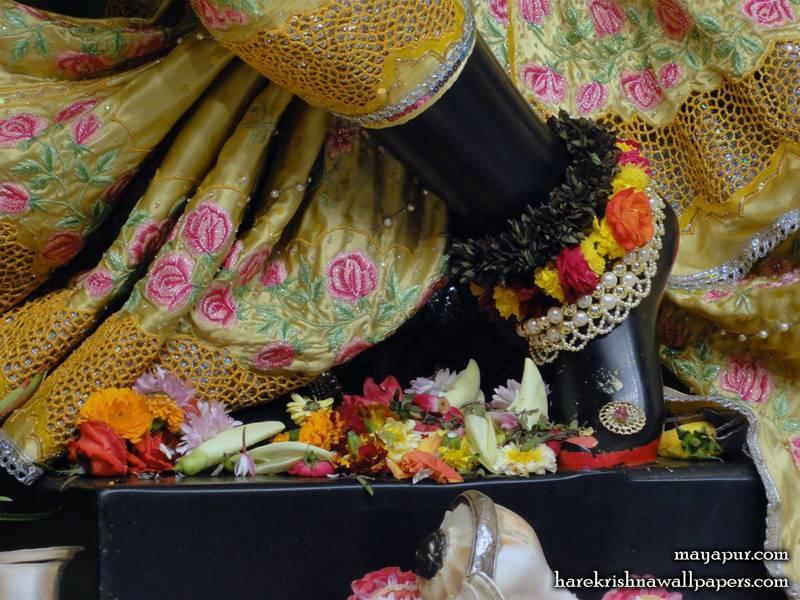 Sri Madhava Feet Wallpaper (003)