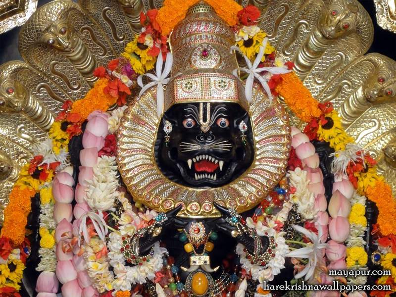 Sri Narasimha Deva Close up Wallpaper (006)