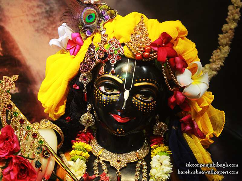 Sri Krishna Close up Wallpaper (003)
