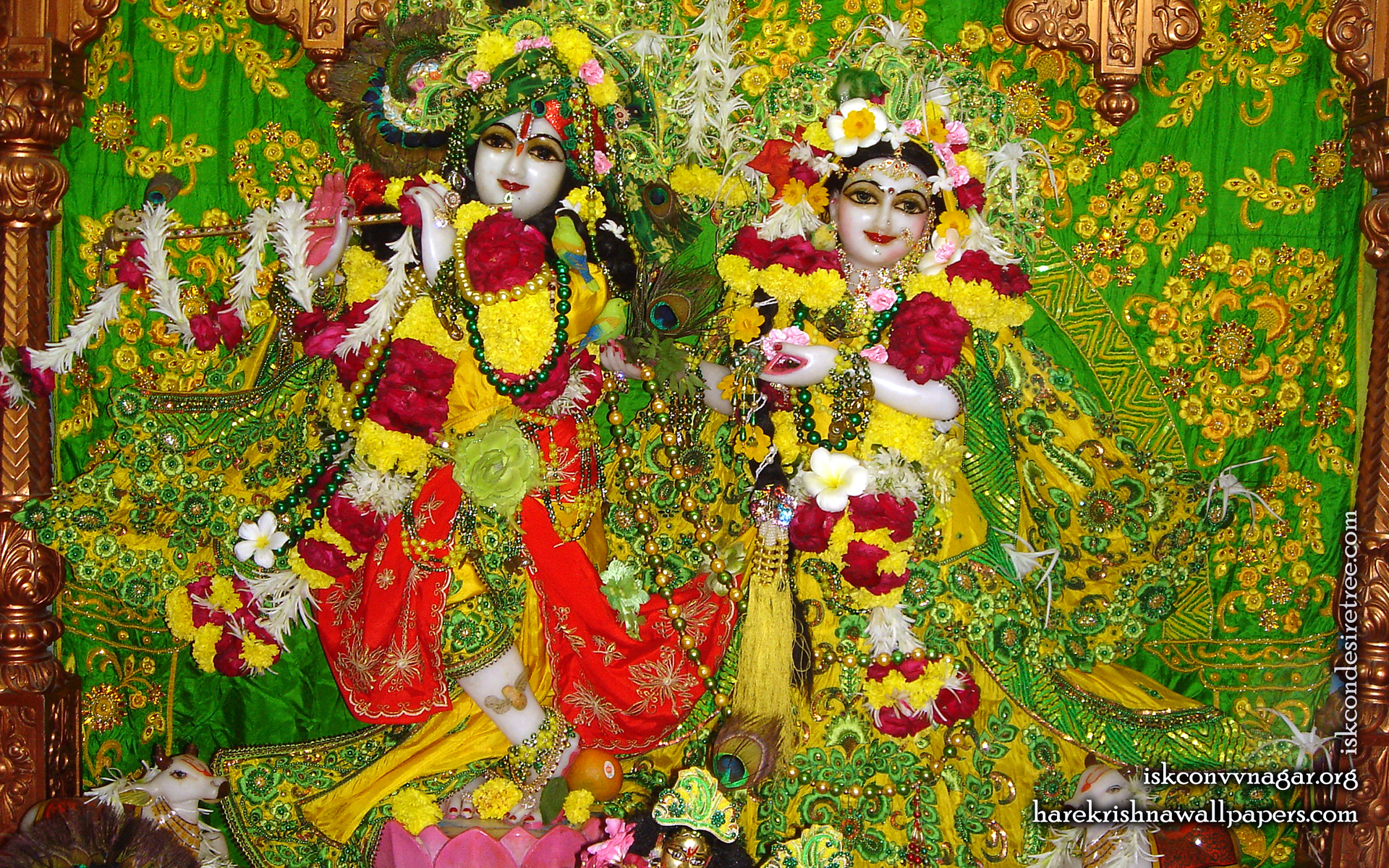 Sri Sri Radha Giridhari Wallpaper (011) Size 1920x1200 Download