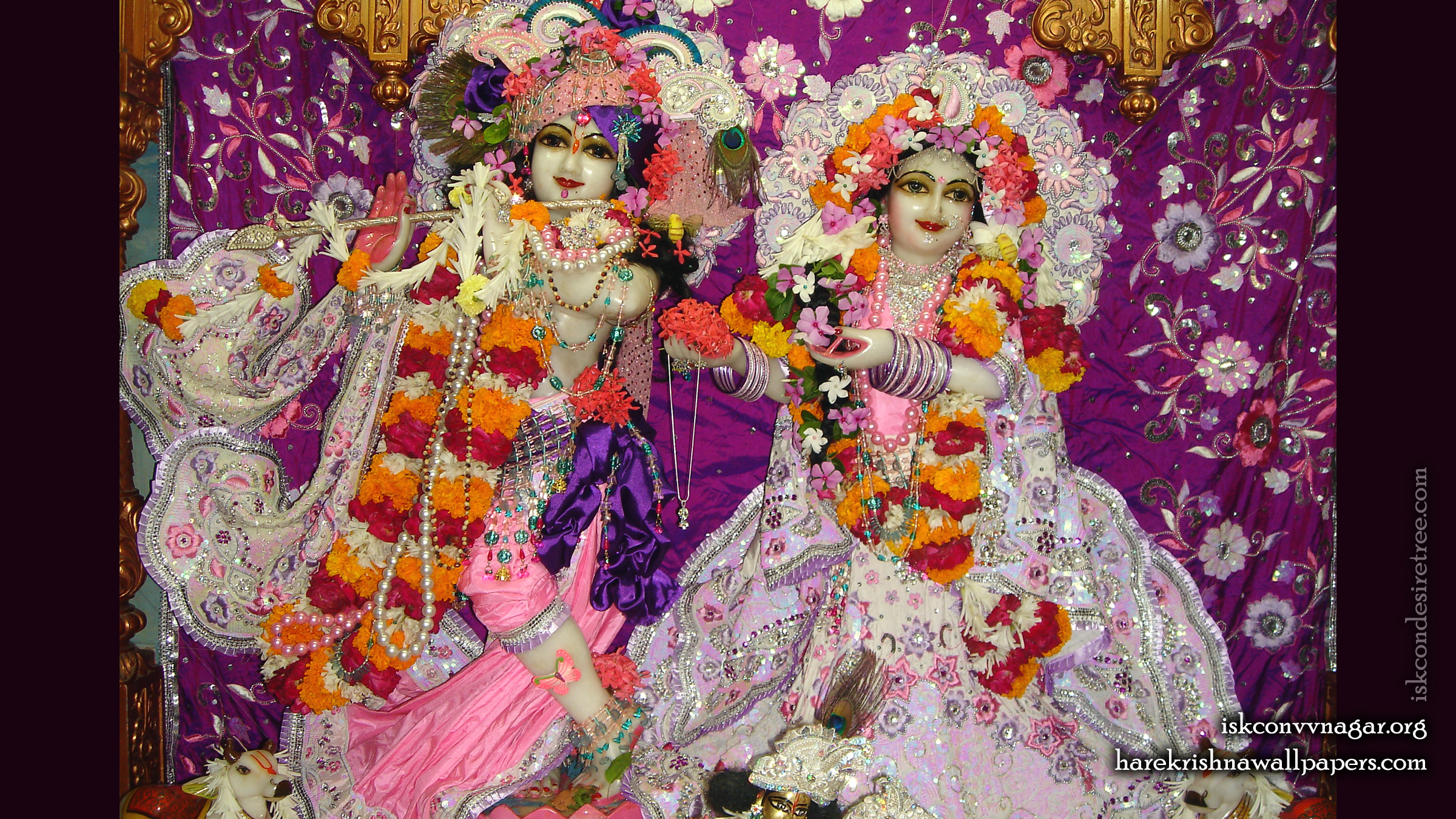 Sri Sri Radha Giridhari Wallpaper (014) Size 2400x1350 Download