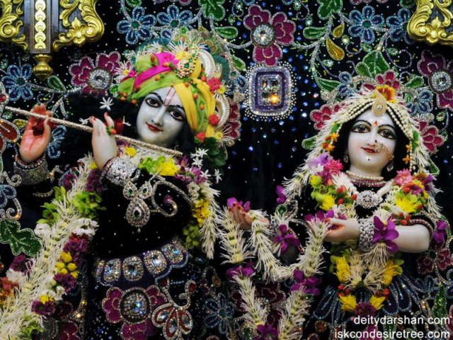 Sri Sri Radha Gopinath Close up Wallpaper (001)
