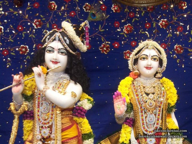 Sri Sri Radha Krishna Close up Wallpaper (002)