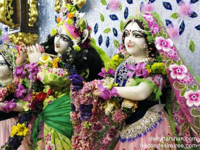 Sri Sri Radha Gopinath Close up Wallpaper (008)