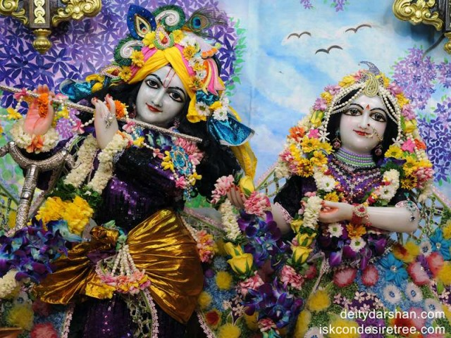 Sri Sri Radha Gopinath Close up Wallpaper (010)
