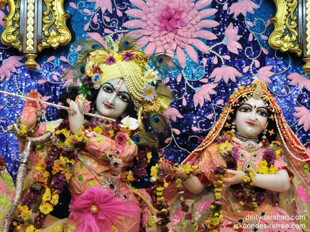 Sri Sri Radha Gopinath Close up Wallpaper (011)