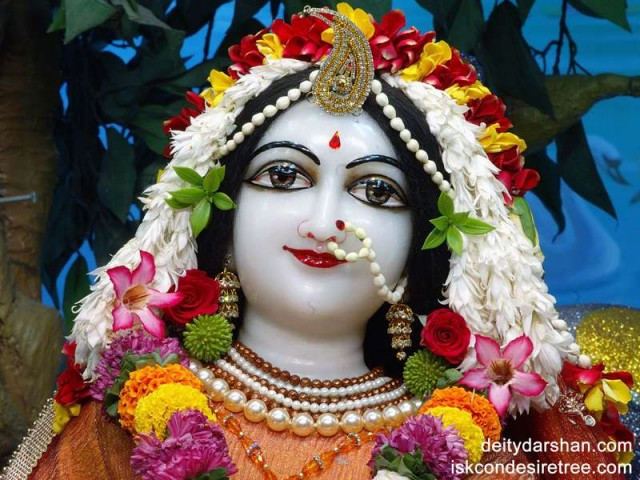 Srimati Radharani Close up Wallpaper (014)