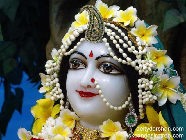 Srimati Radharani Close up Wallpaper (016)