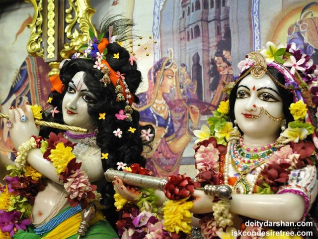 Sri Sri Radha Gopinath Close up Wallpaper (029)