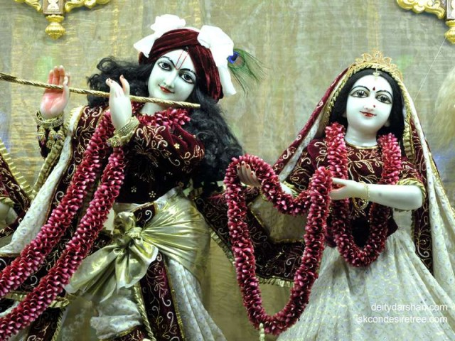 Sri Sri Radha Gopinath Close up Wallpaper (031)