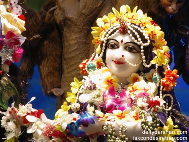 Srimati Radharani Close up Wallpaper (036)