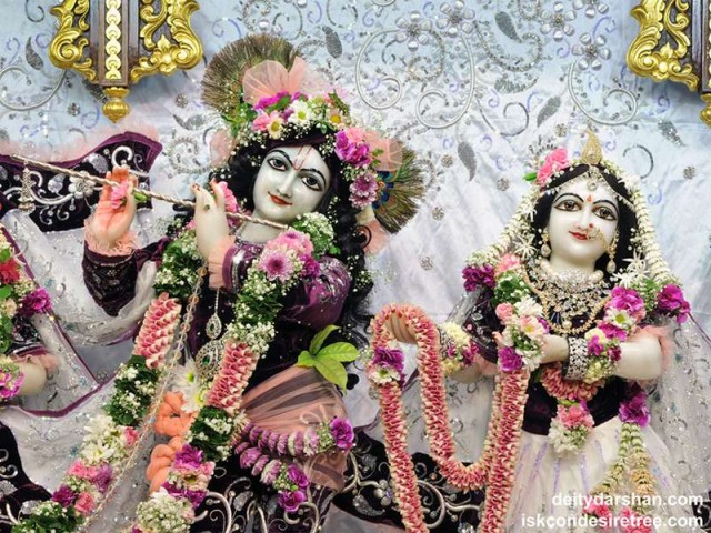Sri Sri Radha Gopinath Close up Wallpaper (041)