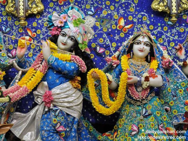 Sri Sri Radha Gopinath Close up Wallpaper (044)