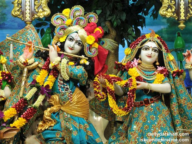 Sri Sri Radha Gopinath Close up Wallpaper (046)