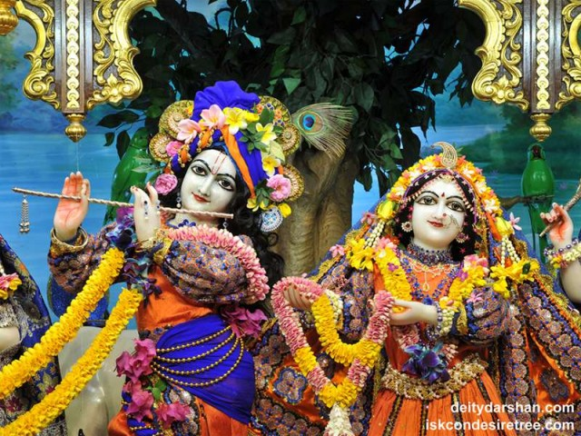Sri Sri Radha Gopinath Close up Wallpaper (047)