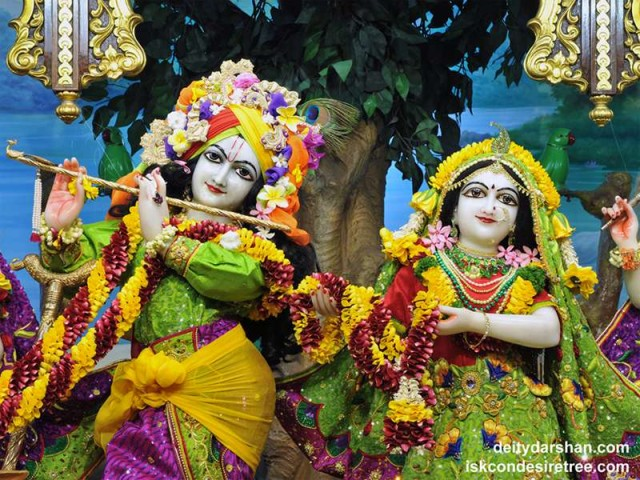 Sri Sri Radha Gopinath Close up Wallpaper (050)