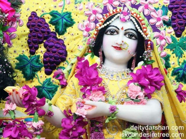 Srimati Radharani Close up Wallpaper (054)