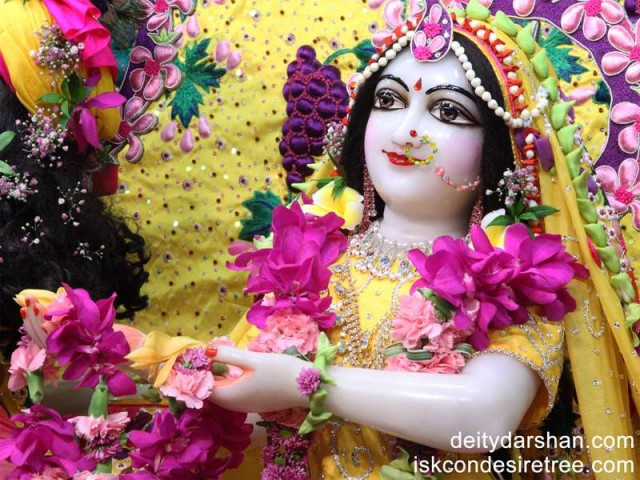 Srimati Radharani Close up Wallpaper (055)