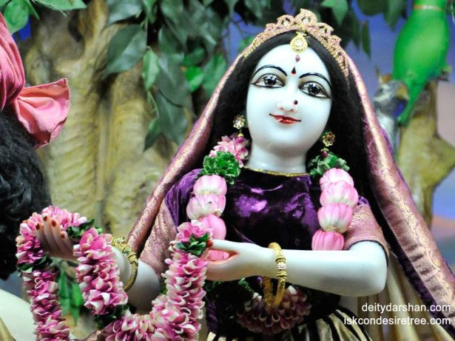 Srimati Radharani Close up Wallpaper (059)